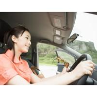 家族間の自動車保険の等級引き継ぎ
