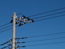 【画像】電柱