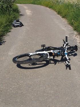 【画像】自転車保険