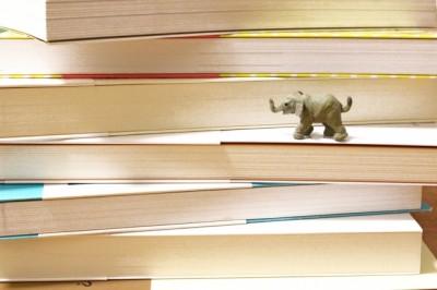 具体的な目標を決めることが英語習得の近道